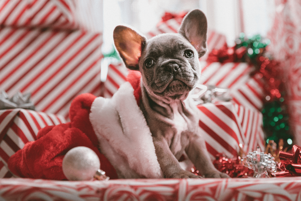 11-christmas-savings
